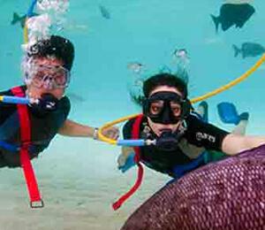 Key West Snuba Diving